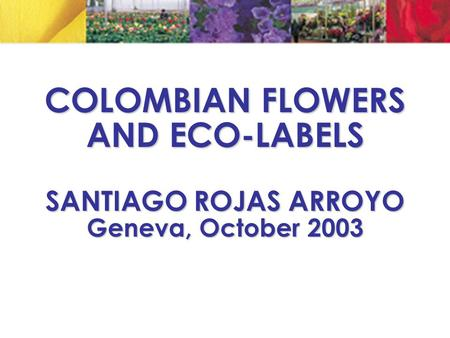 COLOMBIAN FLOWERS AND ECO-LABELS SANTIAGO ROJAS ARROYO Geneva, October 2003.