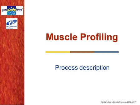 ProSafeBeef – Muscle Profiling –2009 ADIV © Muscle Profiling Process description.