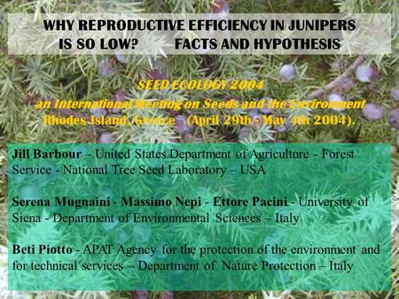 WHY REPRODUCTIVE EFFICIENCY IN JUNIPERS IS SO LOW? FACTS AND HYPOTHESIS SEED ECOLOGY 2004 an International Meeting on Seeds and the Environment Rhodes.