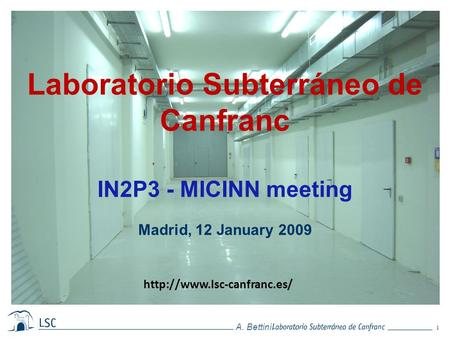 1 A. Bettini. Laboratorio Subterráneo de Canfranc IN2P3 - MICINN meeting Madrid, 12 January 2009