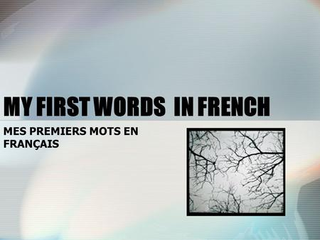 MY FIRST WORDS IN FRENCH MES PREMIERS MOTS EN FRANÇAIS.