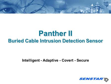 Panther II Buried Cable Intrusion Detection Sensor