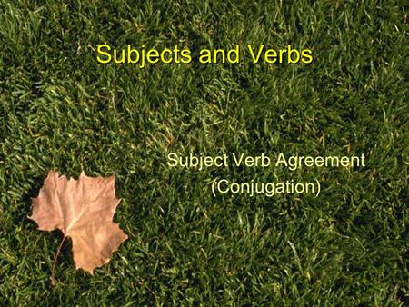 Subjects and Verbs Subject Verb Agreement (Conjugation)