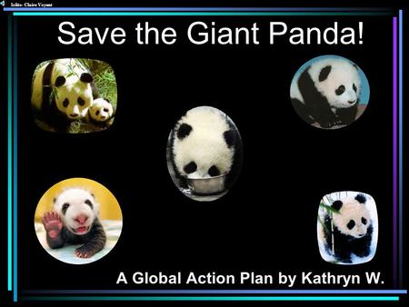 Save the Giant Panda! A Global Action Plan by Kathryn W. Iolite- Claire Voyant.