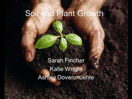 Soil and Plant Growth Sarah Fincher Katie Wright Ashley Dovenmuehle.