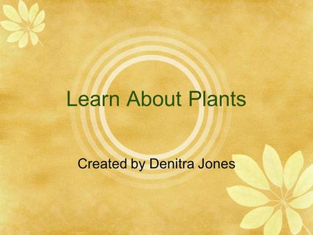 Learn About Plants Created by Denitra Jones. Parts of a Plant Roots Stem Leaves.