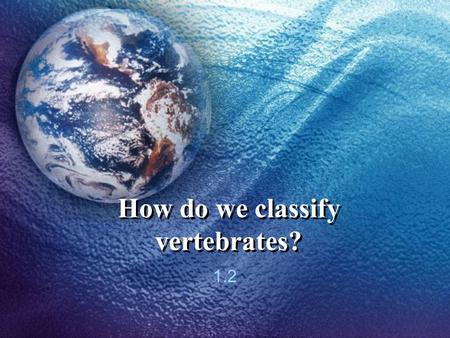 How do we classify vertebrates?