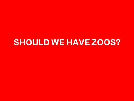SHOULD WE HAVE ZOOS?. YES Chelsea 1 – so the animals dont get lost Deklan – So we can see animals Anneliese – So we can take photos of animals Bianca.