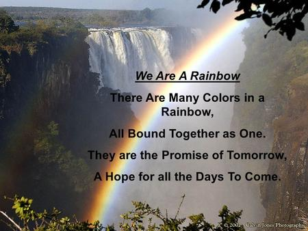 We Are A Rainbow There Are Many Colors in a Rainbow, All Bound Together as One. They are the Promise of Tomorrow, A Hope for all the Days To Come.