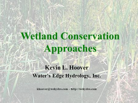 Kevin L. Hoover Waters Edge Hydrology, Inc. –  Wetland Conservation Approaches.