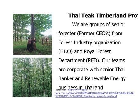 We are groups of senior forester (Former CEOs) from Forest Industry organization (F.I.O) and Royal Forest Department (RFD). Our teams are corporate with.