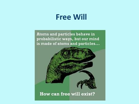 Free Will. The importance of free will Human autonomy and dignity Value of deliberation Deserving praise and condemnation Moral responsibility.