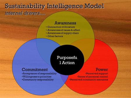 Sustainability Intelligence Model internal drivers.... Power Perceived support Sense of personal control Perceived community resources Awareness Connection.