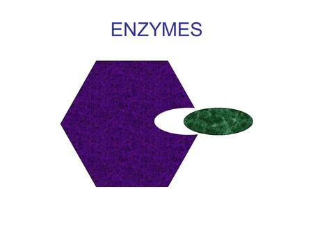 ENZYMES. What can you recall from IGCSE? Define the following terms: 1.Anabolic reactions: 2.Catabolic reactions: 3.Metabolism: 4.Catalyst: 5.Metabolic.