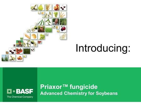 Priaxor™ fungicide Advanced Chemistry for Soybeans