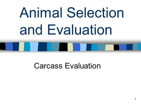 1 Animal Selection and Evaluation Carcass Evaluation.