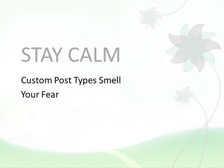 STAY CALM Custom Post Types Smell Your Fear. WHO AM I? Christine the designer, coder, and WordPress Specialist doesnt sound as good. Yes! This presentation.