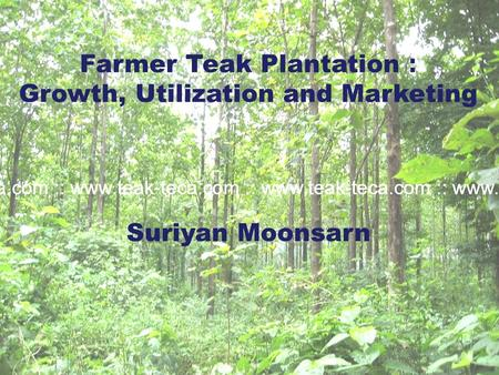 Farmer Teak Plantation : Growth, Utilization and Marketing Suriyan Moonsarn.