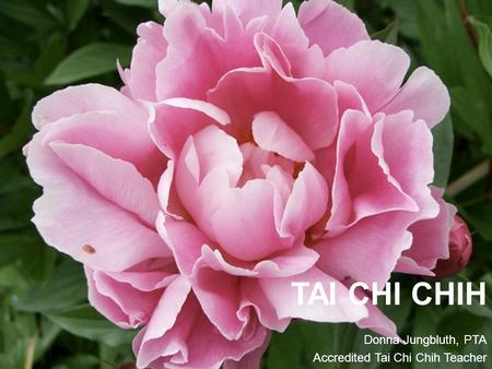 TAI CHI CHIH Donna Jungbluth, PTA Accredited Tai Chi Chih Teacher.