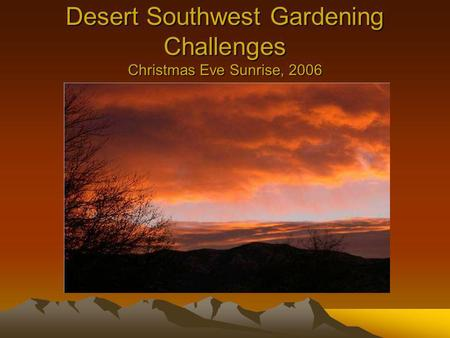 Desert Southwest Gardening Challenges Christmas Eve Sunrise, 2006.