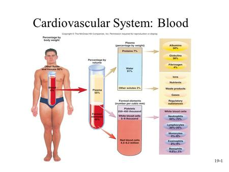 19-1 Cardiovascular System: Blood. 19-2 Plasma Liquid part of blood. –Colloid: liquid containing suspended substances that dont settle out of solution.