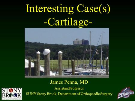 Interesting Case(s) -Cartilage- James Penna, MD Assistant Professor SUNY Stony Brook, Department of Orthopaedic Surgery.