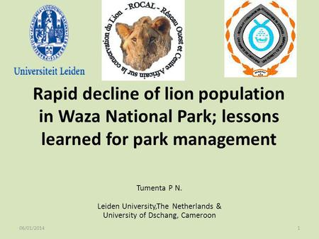 Rapid decline of lion population in Waza National Park; lessons learned for park management Tumenta P N. Leiden University,The Netherlands & University.