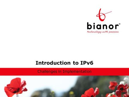 Introduction to IPv6 Challenges in Implementation.