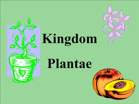 Kingdom Plantae Objectives: - Know the different types of plants. - Know structures and functions of plant parts. - Be able to label and explain function.