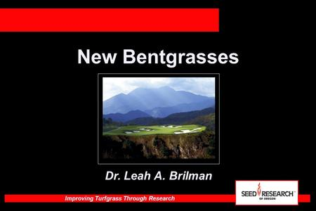 Improving Turfgrass Through Research New Bentgrasses Dr. Leah A. Brilman.
