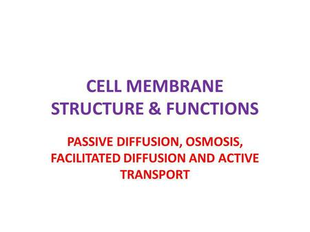 CELL MEMBRANE STRUCTURE & FUNCTIONS