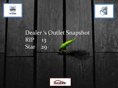 Dealer s Outlet Snapshot RIP 13 Star 29. Category:- RIP Shop Name:- Sahni Traders District :- Solan Location :- By Pass Solan.