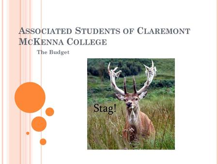 A SSOCIATED S TUDENTS OF C LAREMONT M C K ENNA C OLLEGE The Budget.