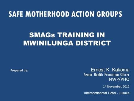 SAFE MOTHERHOOD ACTION GROUPS