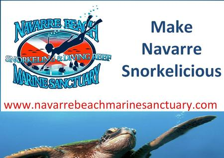 Overview WHO? Marine Sanctuary Committee Part of Navarre Area Chamber of Commerce 501 c 3 - Chamber Foundation All Volunteer Organization Monthly Meetings.