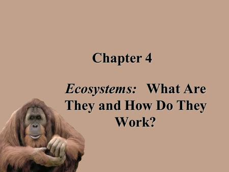 Chapter 4 Ecosystems: What Are They and How Do They Work?