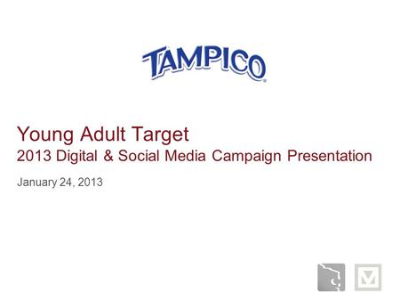 Young Adult Target 2013 Digital & Social Media Campaign Presentation January 24, 2013.