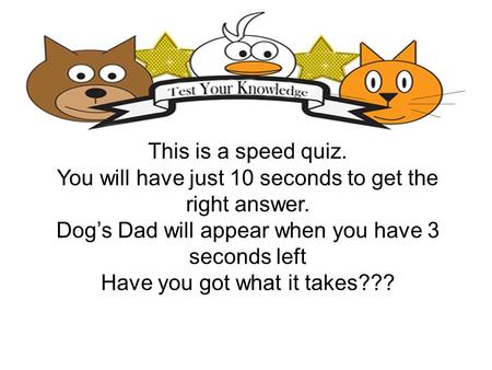 This is a speed quiz. You will have just 10 seconds to get the right answer. Dogs Dad will appear when you have 3 seconds left Have you got what it takes???