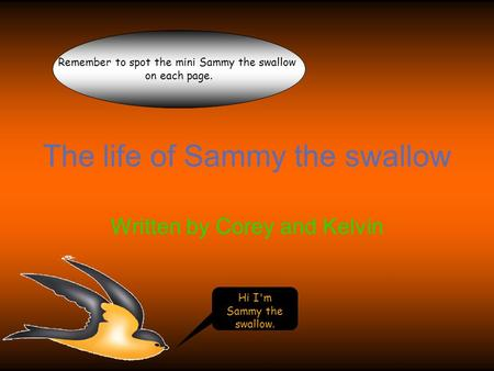 The life of Sammy the swallow Written by Corey and Kelvin Hi I'm Sammy the swallow. Remember to spot the mini Sammy the swallow on each page.