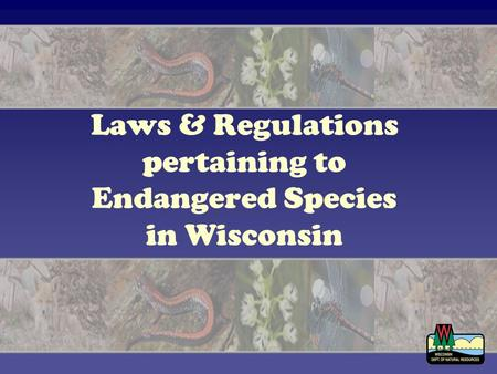 Laws & Regulations pertaining to Endangered Species in Wisconsin.