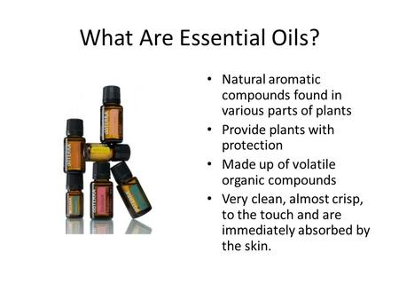 What Are Essential Oils? Natural aromatic compounds found in various parts of plants Provide plants with protection Made up of volatile organic compounds.