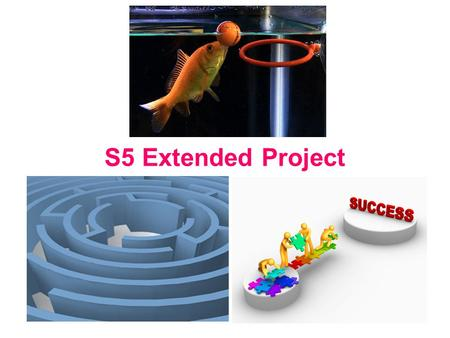 S5 Extended Project. Aims Develops employability skills, including project management. Specifically designed to aid transition to higher education and.