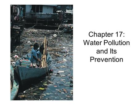 Chapter 17: Water Pollution and Its Prevention. The DEAD ZONE… WHY????