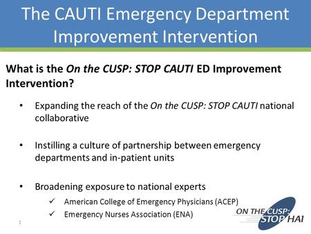 The CAUTI Emergency Department Improvement Intervention