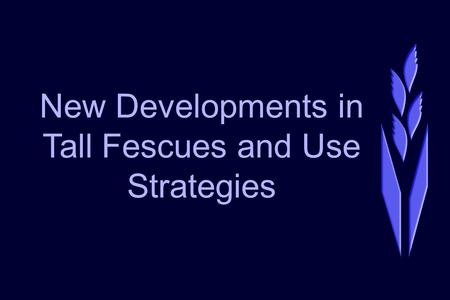 New Developments in Tall Fescues and Use Strategies.