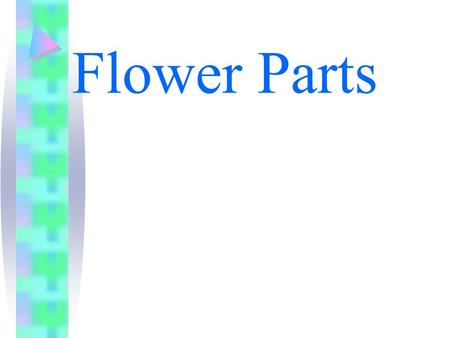 Flower Parts. I. Flowers A. Flowers are the reproductive organs in plants. B. Flower typically consists of four different parts... Sepals, petals, the.