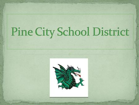 Pine City Public Schools Early Childhood100 Elementary800 High School800 St. Marys Catholic School (P-6) 45 students Home School 40.