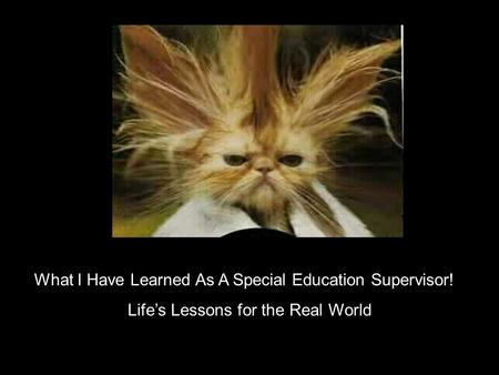 What I Have Learned As A Special Education Supervisor! Lifes Lessons for the Real World.