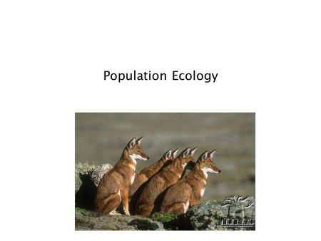 Population Ecology. Population Dynamics ______________________: all the individuals of a species that live together in an area ______________________: