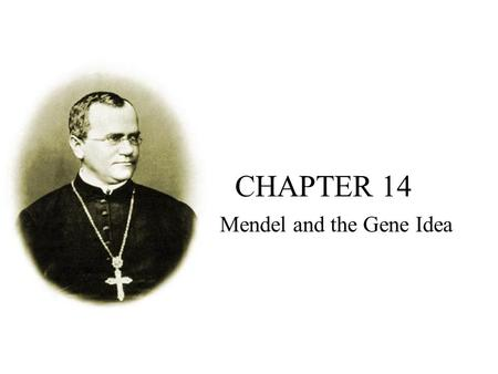 CHAPTER 14 Mendel and the Gene Idea. Big Idea 3: Living systems store, retrieve, transmit and respond to information essential to life processes. Mendel.